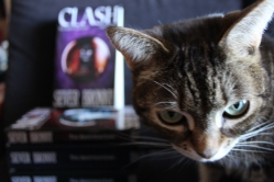 The Arinthian cat investigating the launch of CLash