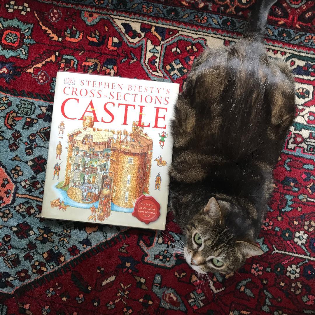 catandcastle