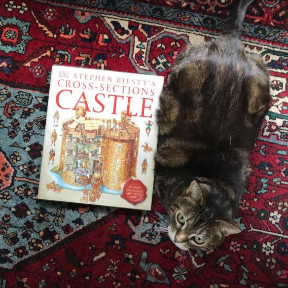 catandcastle